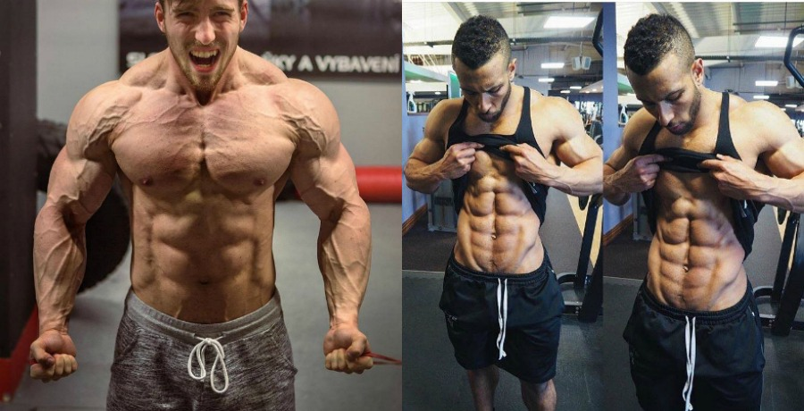 Stanozolol before and after